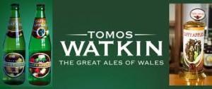 Tomos Watkin 1